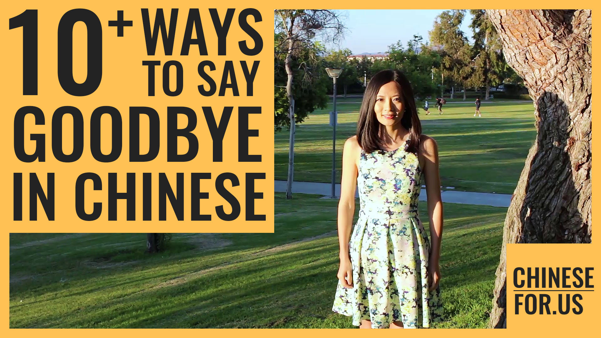 14 Ways How To Say Goodbye In Chinese Zaijian Chinese Bye