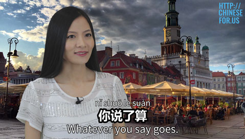 Learn how to say whatever you say goes, you decide in Chinese!
